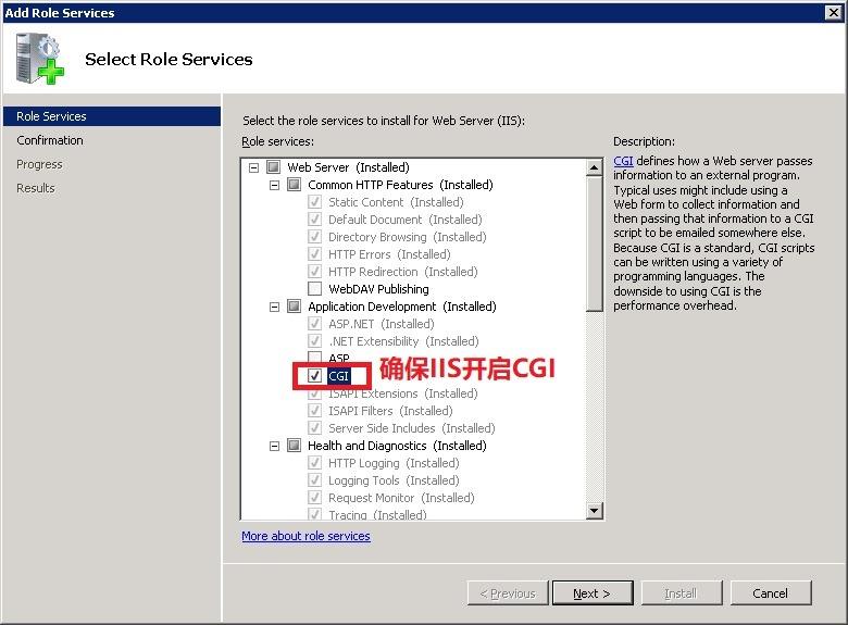 IIS 开启 CG I支持模块选项