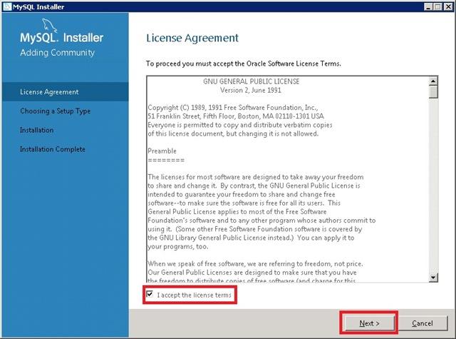Windows Server 安装 MySQL,同意许可协议